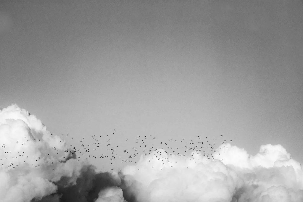 Nubes: bocetos de la imaginación