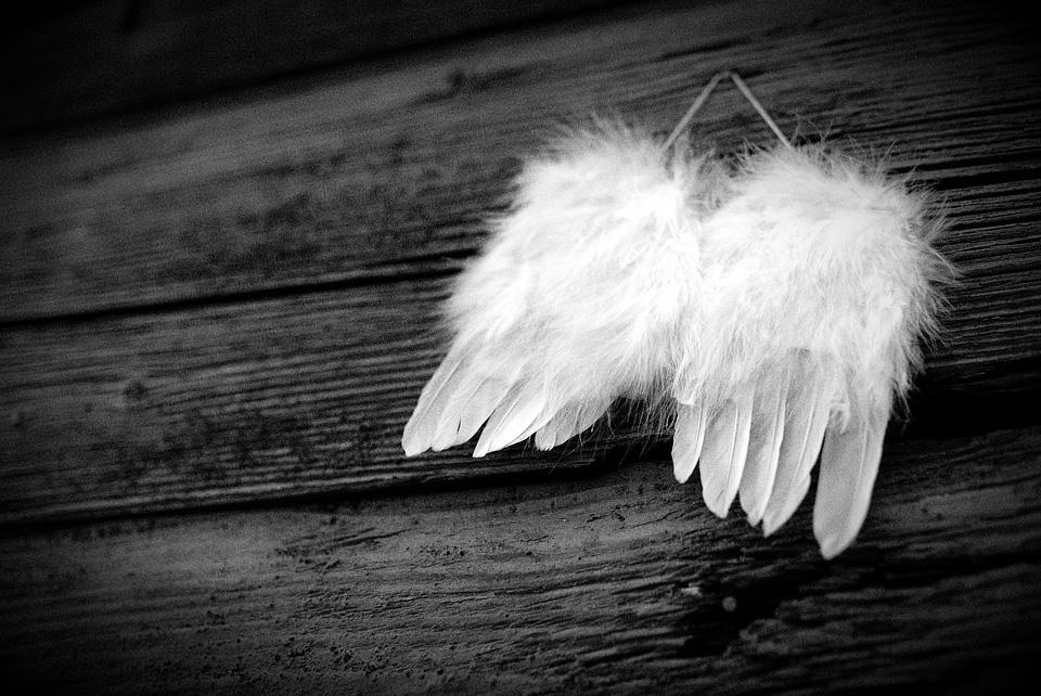 Descripción cruenta de un ángel cruel