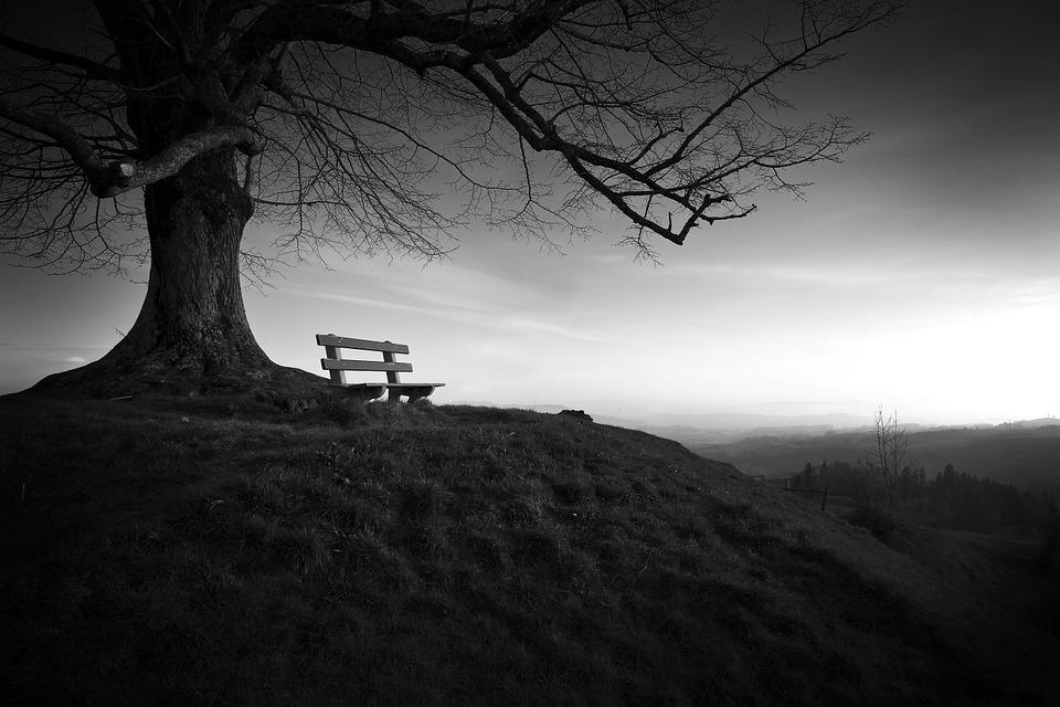 Memorias de una ajena soledad