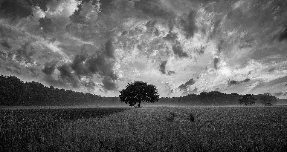 Las nubes y el cielo