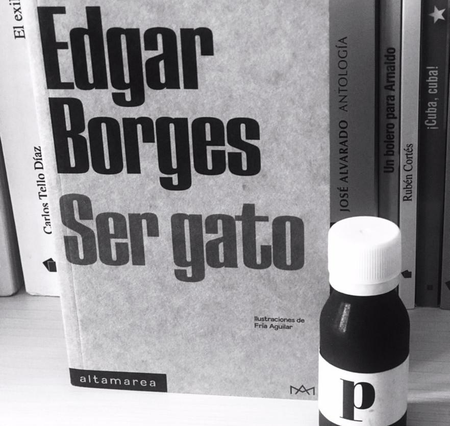 Ser gato de Edgar Borges: en busca de la libertad